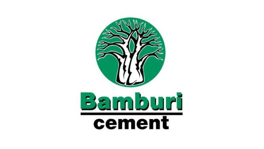 Bamburi Cement KRA Pin